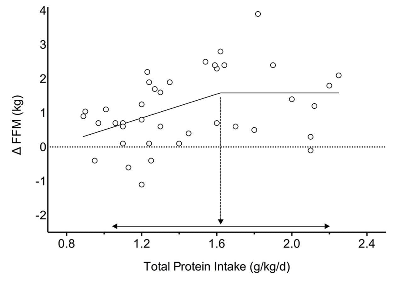 Podaż białka, a przyrost masy mięśniowej
