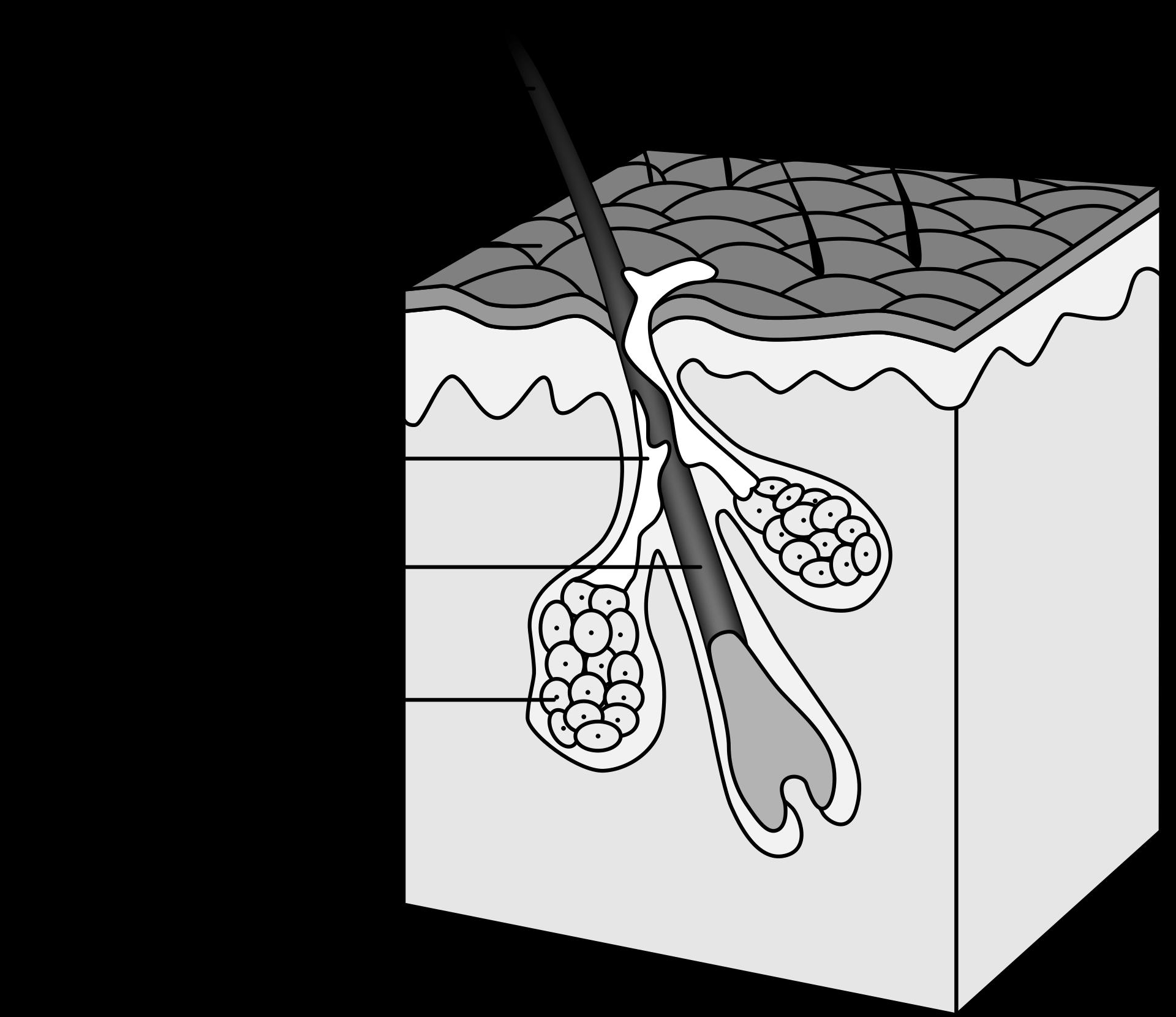 Nonacne - Recenzja suplementu na trądzik