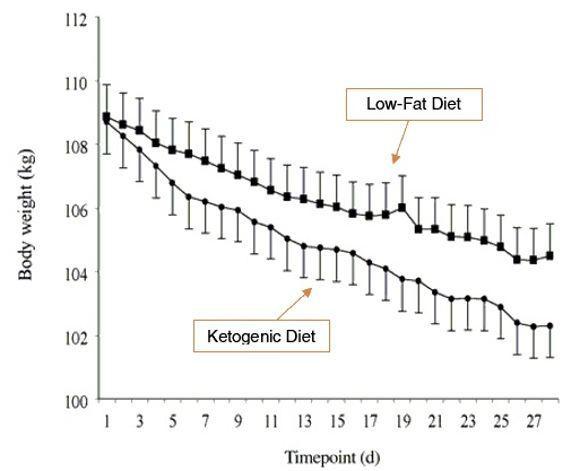 Dieta ketogeniczna - wpływ na odchudzanie