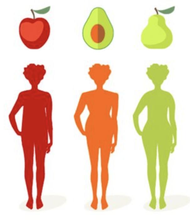 Wskaźnik WHR i trzy typy sylwetki: Jabłko, Awokado i Gruszka