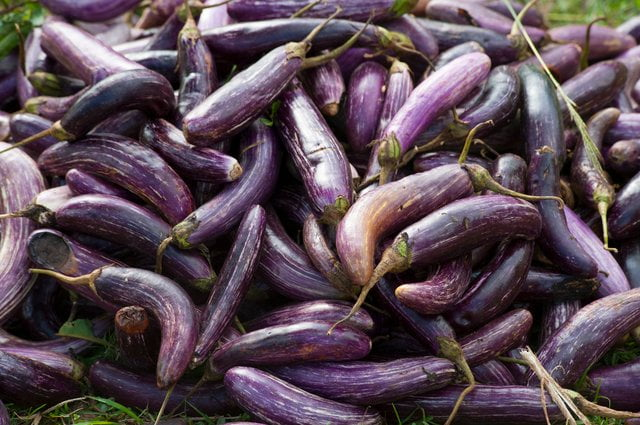baklazan warzywa niskoweglowodanowe