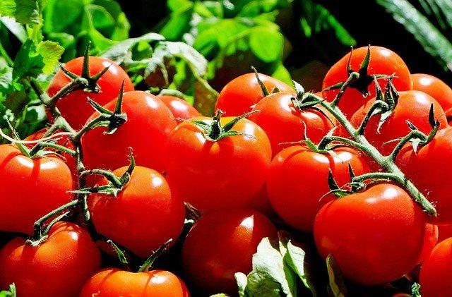 pomidory na diecie keto